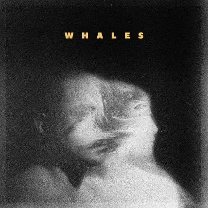 Whales (CD/Digital)
